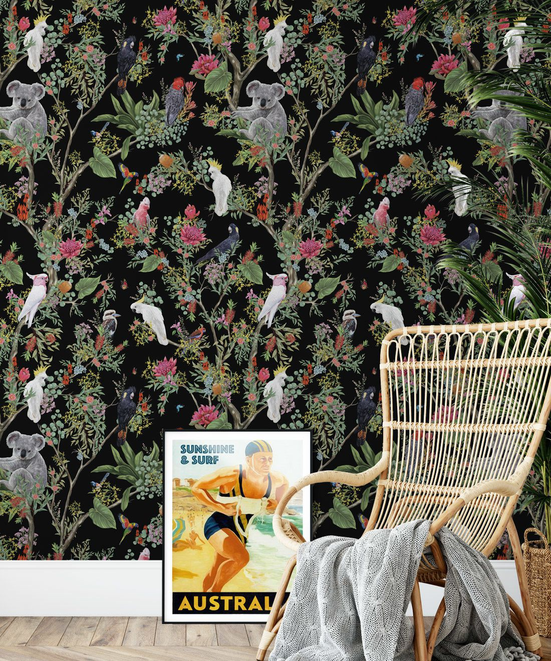 Australia Wallpaper • Cockatoos, Koalas, Parrots, Finches • Milton & King USA • Black Wallpaper Insitu