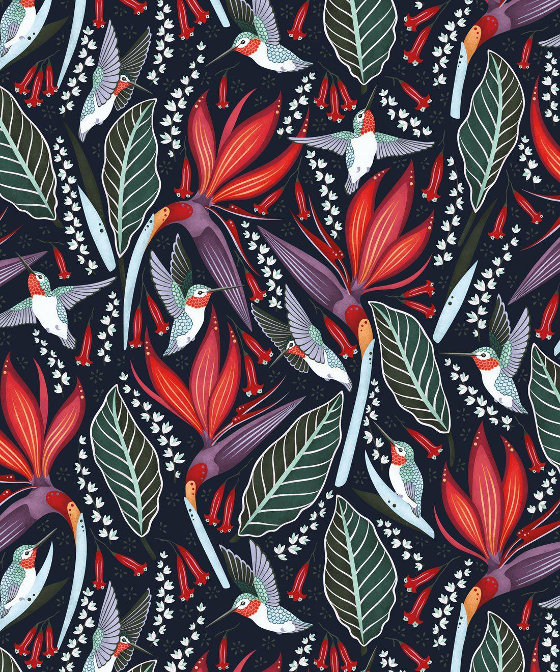 Hummingbird Wallpaper • Birds Of Paradise Flower • Bird Wallpaper • Red Flowers • Black Cherry