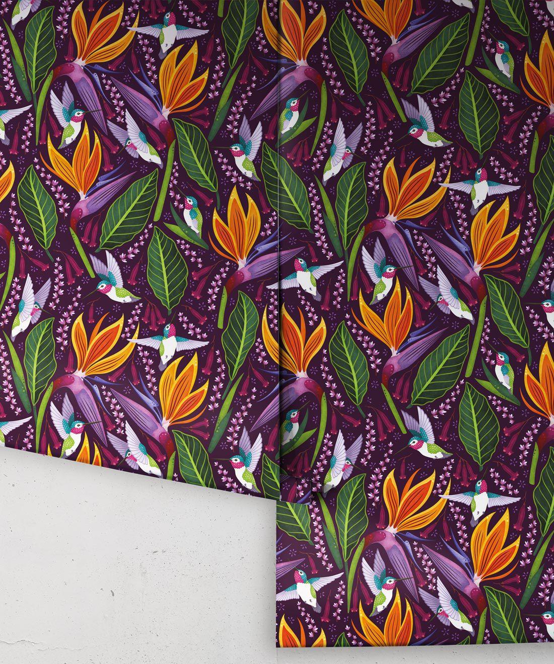 Hummingbird Wallpaper • Birds Of Paradise Flower • Bird Wallpaper • Purple Wallpaper Drops
