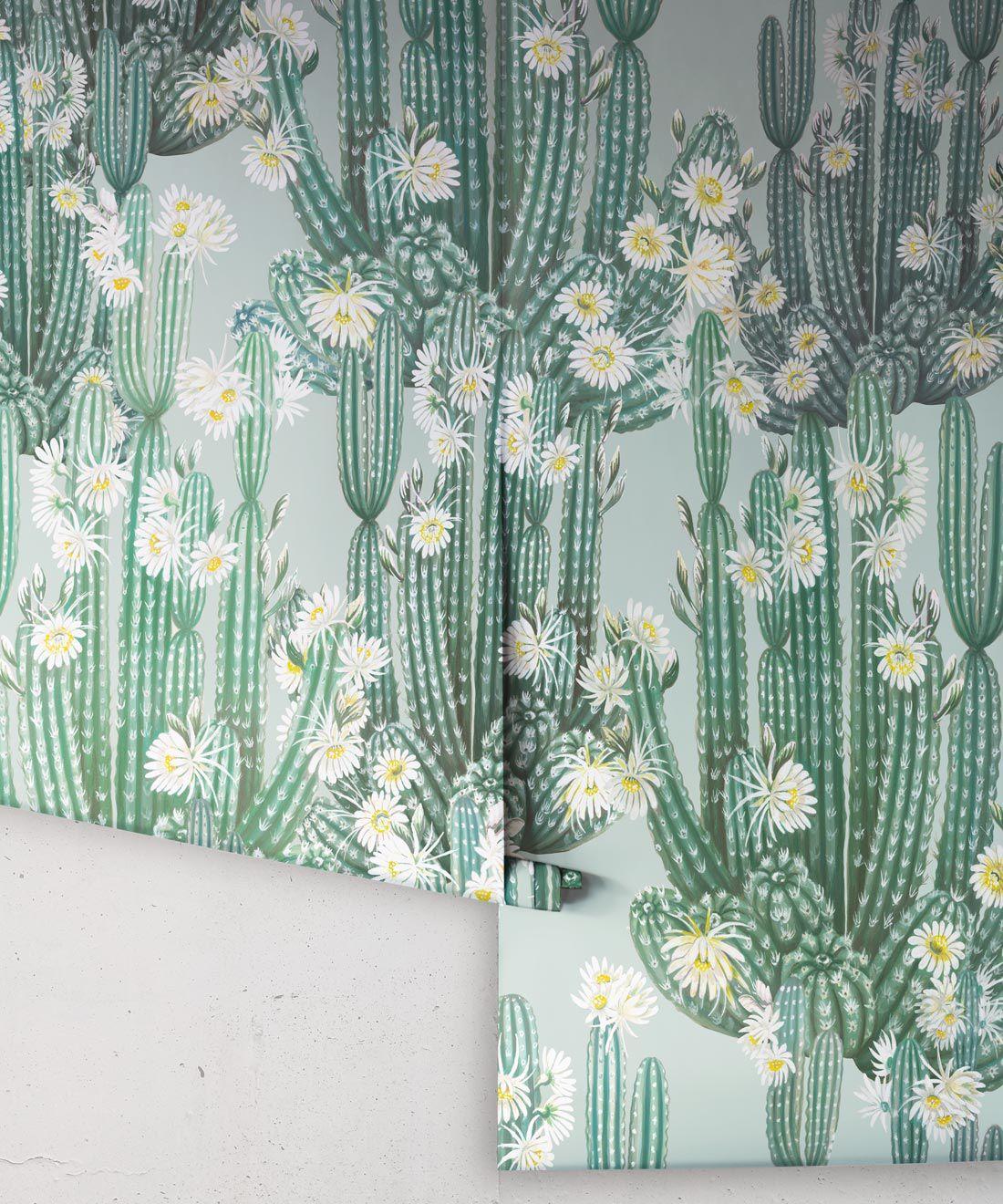San Pedro Wallpaper Aqua • Cactus Wallpaper • Succulents Wallpaper • Desert Wallpaper Rolls