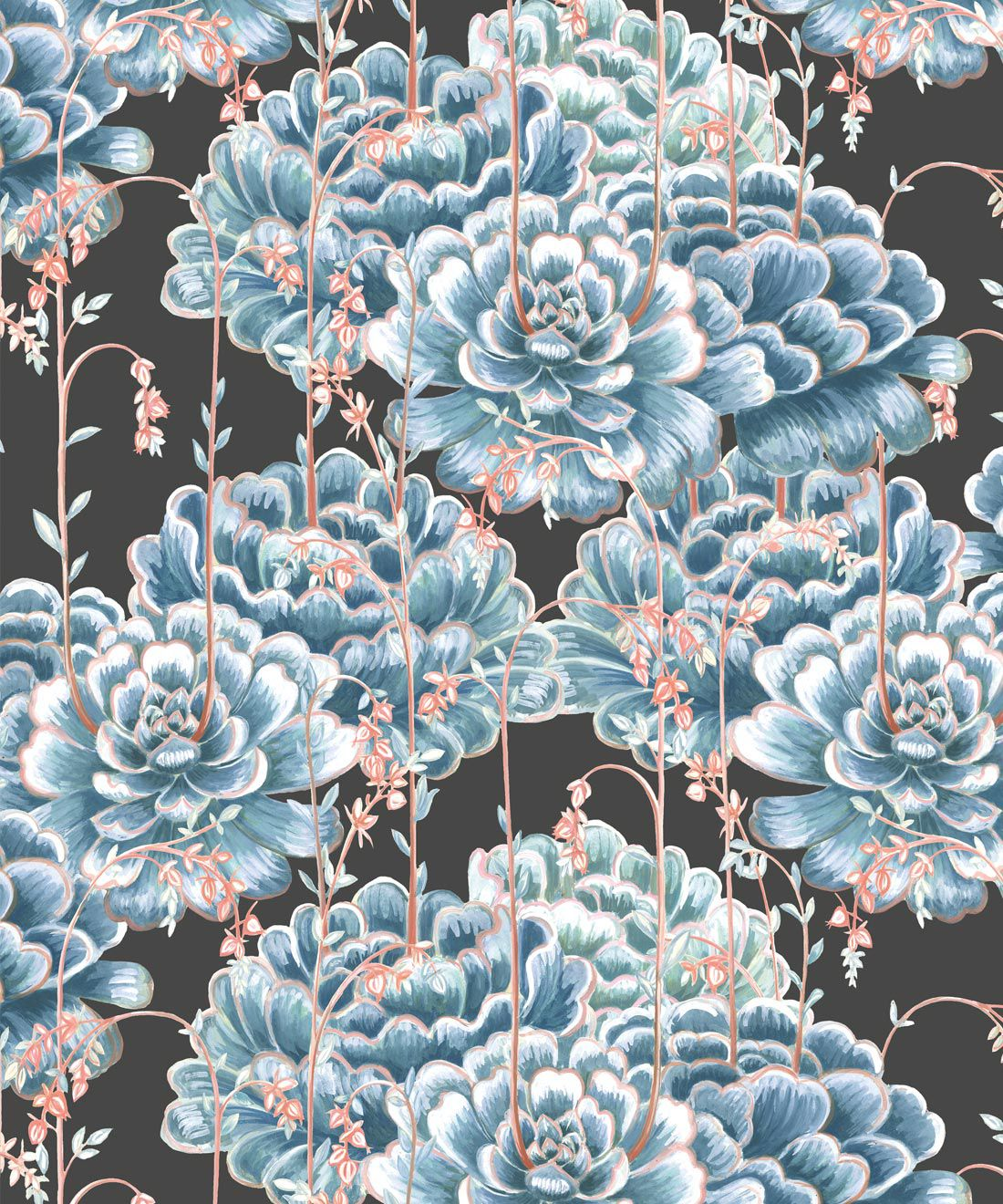 Succulents Wallpaper Blue Charcoal • Cactus Wallpaper • Desert Wallpaper Swatch on black background