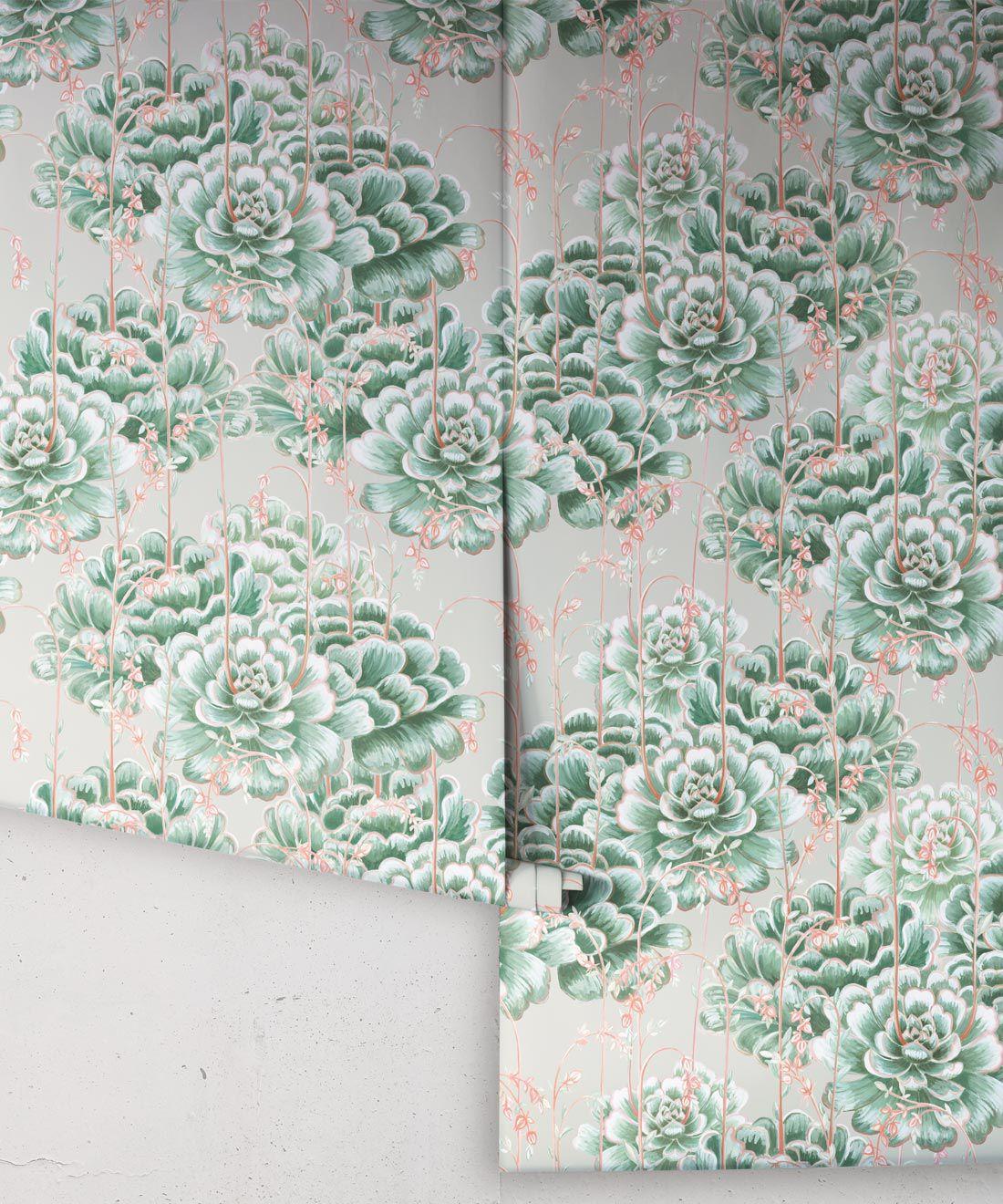 Succulents Wallpaper Green Beige • Cactus Wallpaper • Desert Wallpaper rolls on grey background
