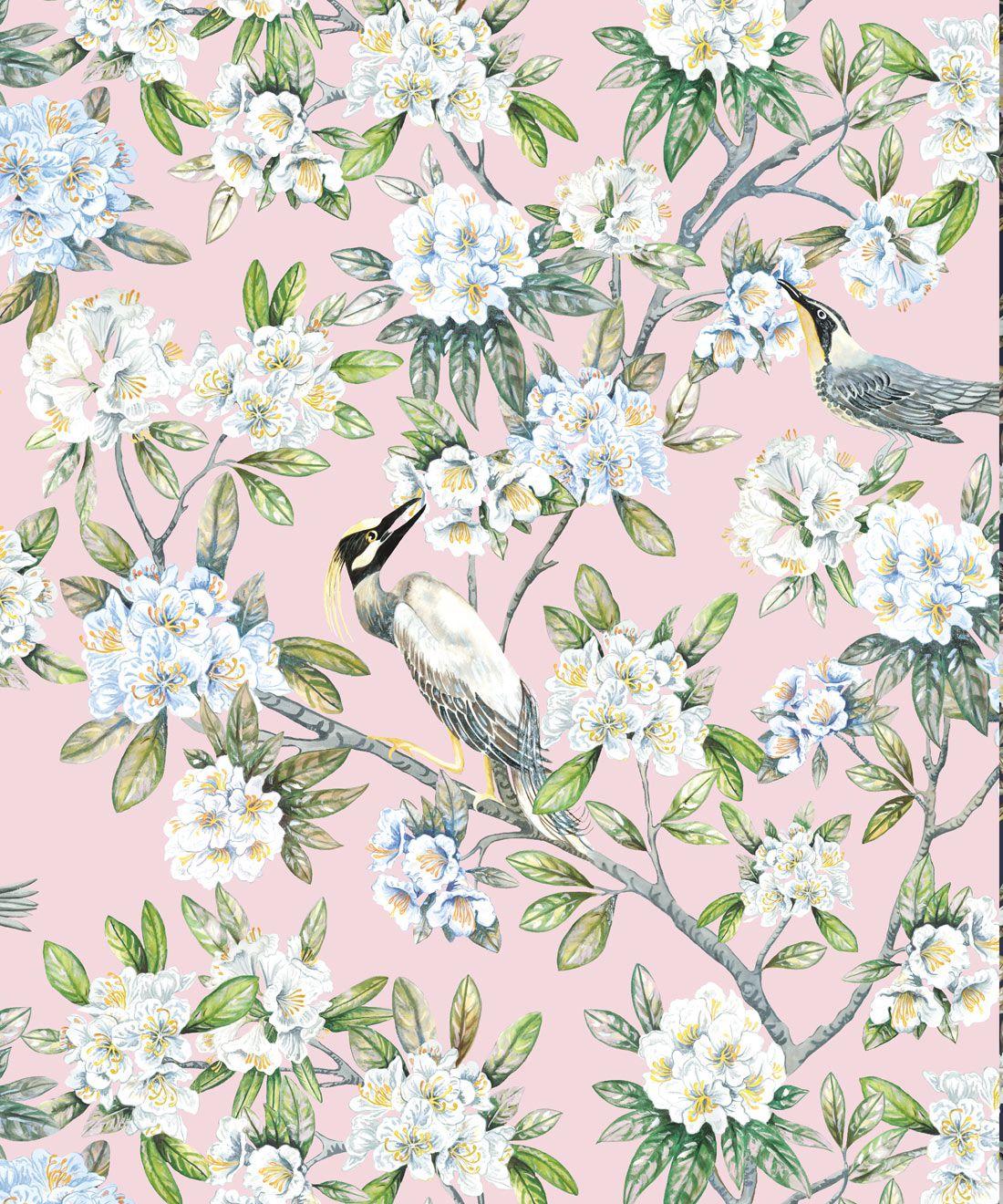Victoria Wallpaper • Floral Wallpaper • Pink Wallpaper • Swatch