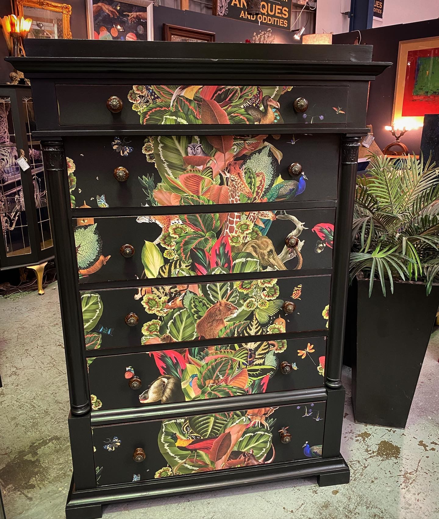 Antique Chest Of Drawers with Viva Tropicana Wallpaper by Milton & King available from Halchemy Design