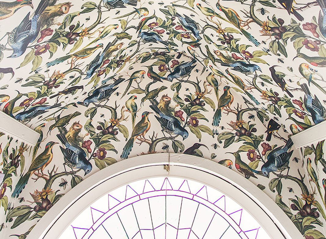 Wallpaper On the Ceiling • Making It Lovely • Ornithology • Bird Wallpaper