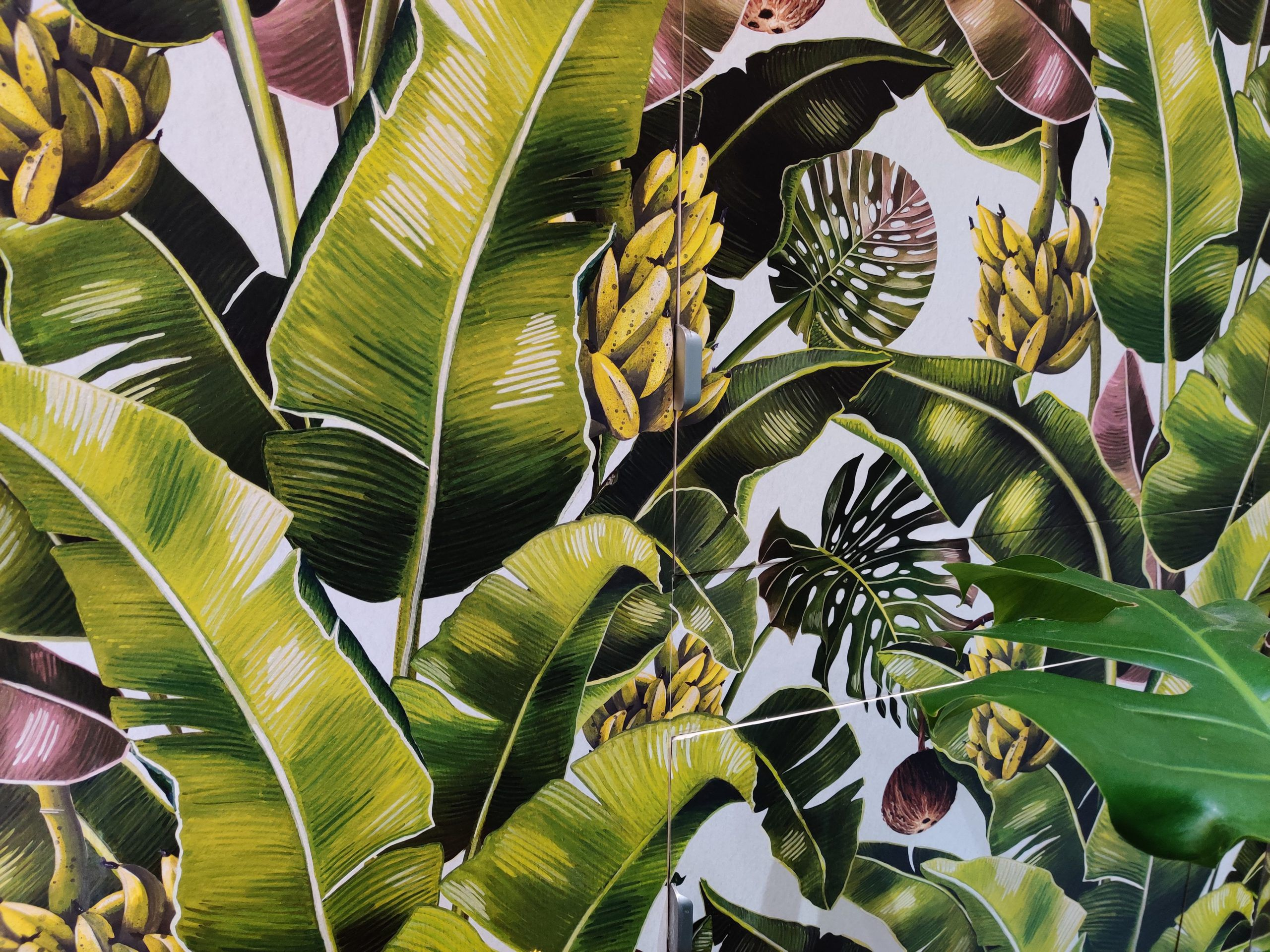 Kingdom Palm Wallpaper • Tropical Wallpaper •Wallpaper In the Bathroom • How To Waterproof Your Wallpaper • Michaela Livingstone-Banks • Andrew Dillon Decorating • Close Up Photo of Wallpaper