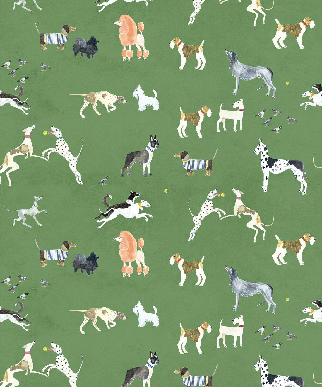 Doggies Wallpaper •Dog Wallpaper •Green • Swatch