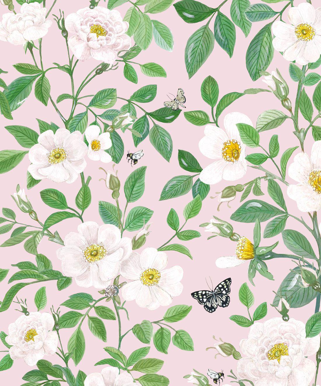 Rosa Wallpaper • Floral Wallpaper • Blush •Swatch