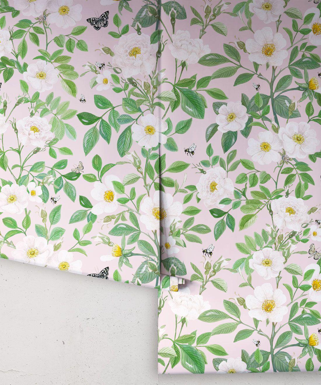 Rosa Wallpaper • Floral Wallpaper • Blush •Rolls