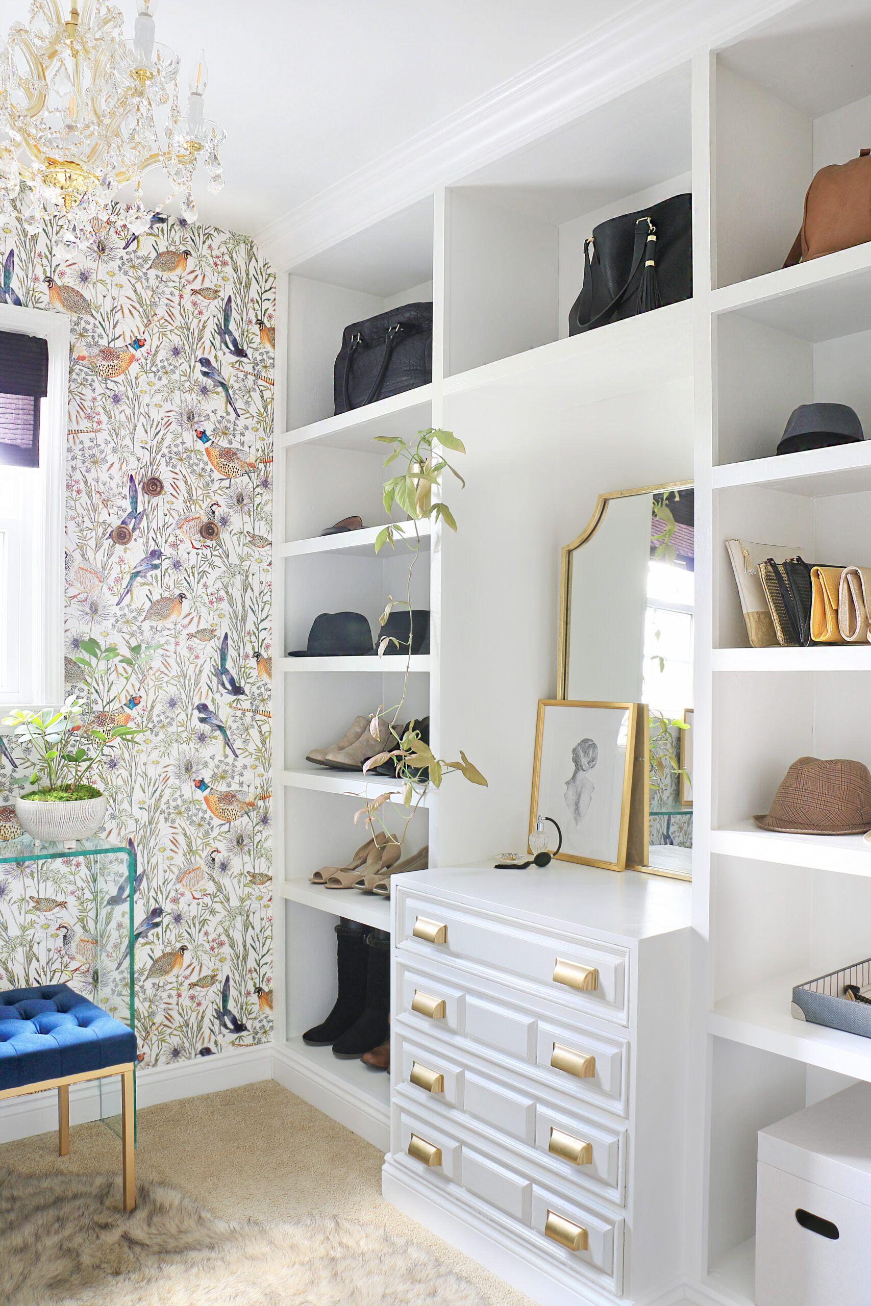 Woodland Birds • Closet Wallpaper •Ursula Carmona