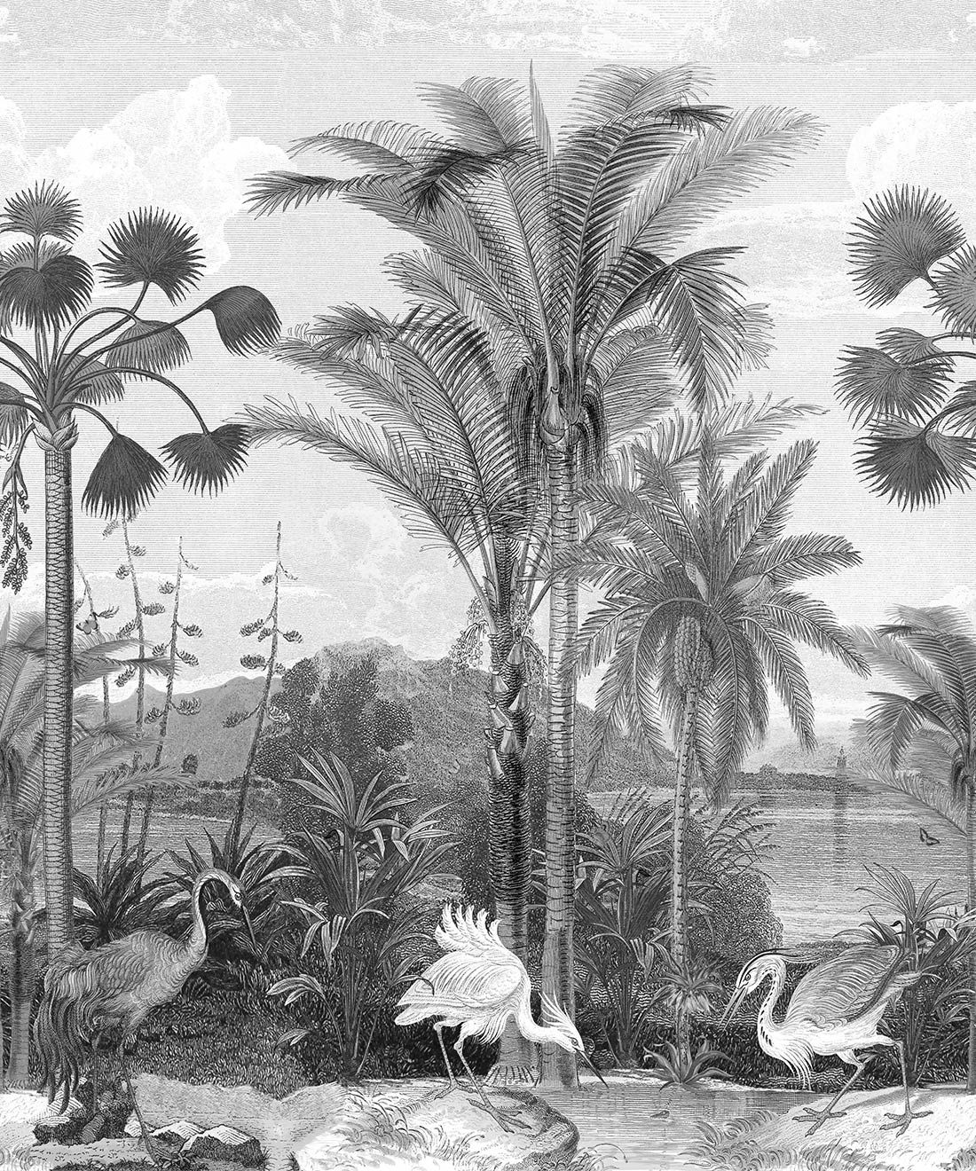 Indian Subcontinent Wallpaper Mural •Bethany Linz • Palm Tree Mural • Black & White • Swatch