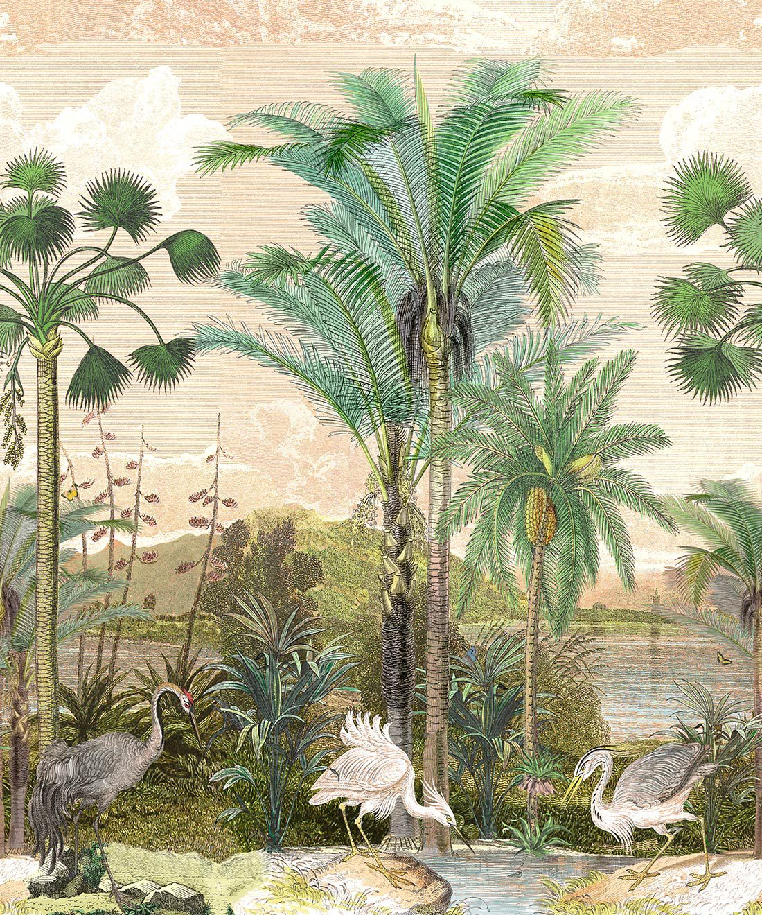 Indian Subcontinent Wallpaper Mural •Bethany Linz • Palm Tree Mural • Pink • Swatch