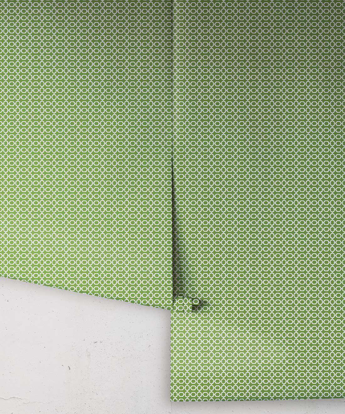 Ravello Wallpaper • Dianne Bergeron • Parsley •Rolls