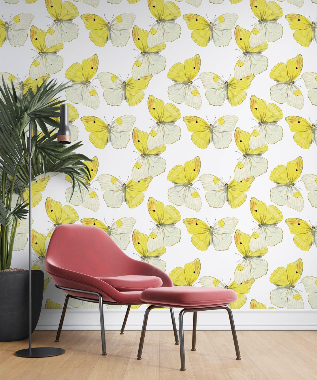 Blended Butterfly Wallpaper • White & Yellow Butterflies Wallpaper •Insitu